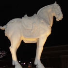 A horse outside of P.F. Chang's